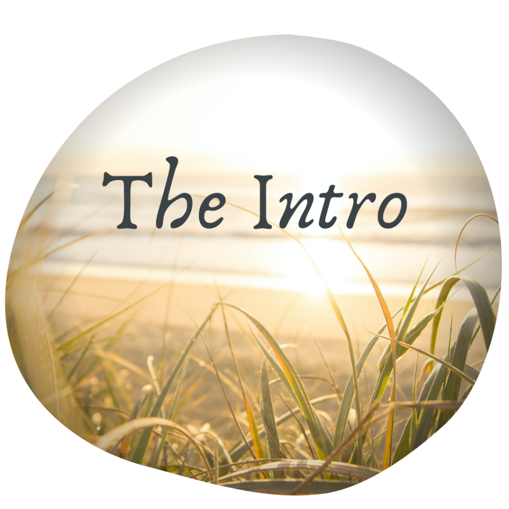 The Intro Taster Session